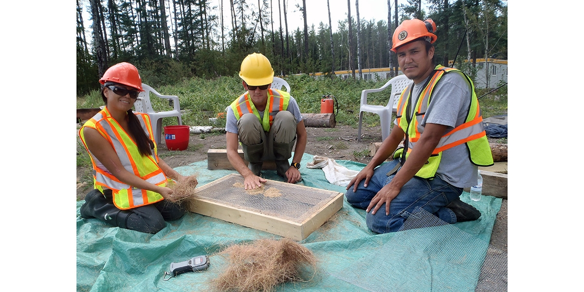 Native Seeds Harvest Initiative, Treaty 5 Lands | See More