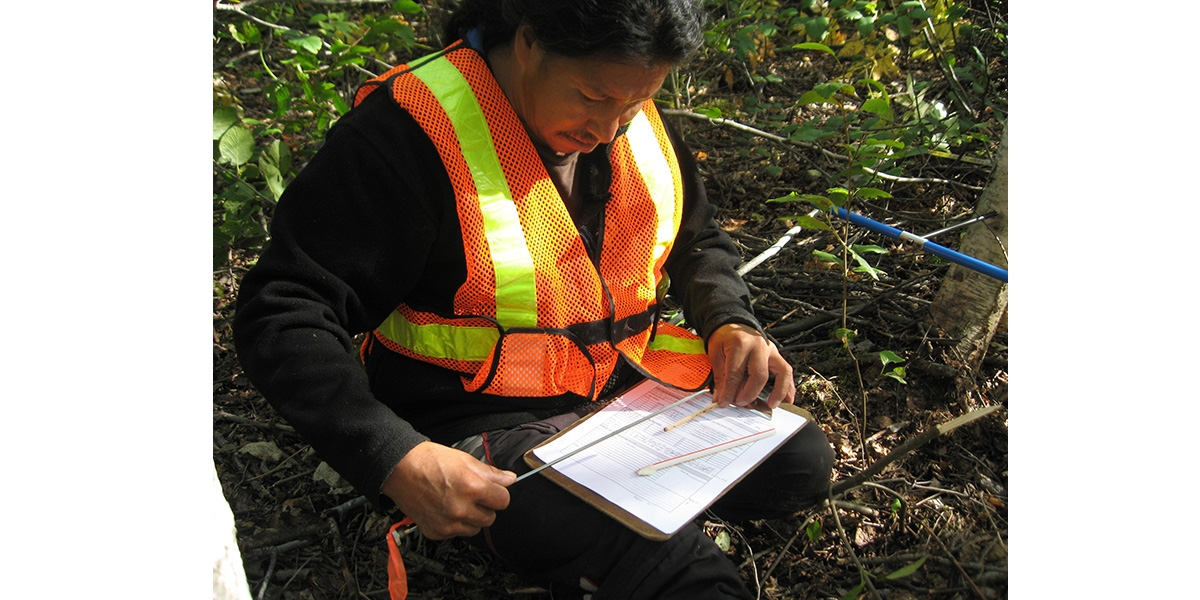Terrestrial Assessment, Manitoba's East Side Road, Treaty 5 Lands | See More